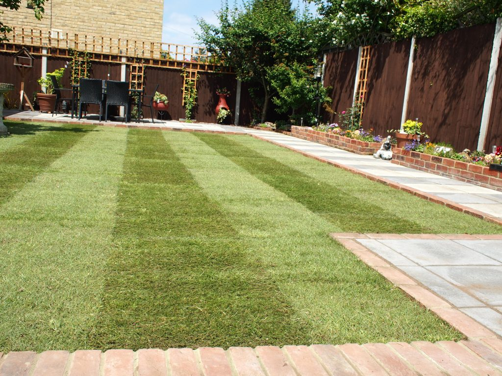 we-can-transform-your-lawn-new-lawns-maidstone-kent-turfing