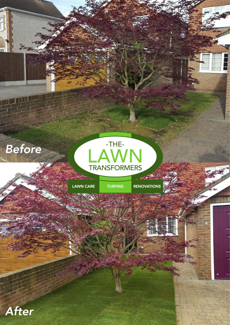 Front-lawn-levelling-turf-laying-Bexley-DA5-Kent