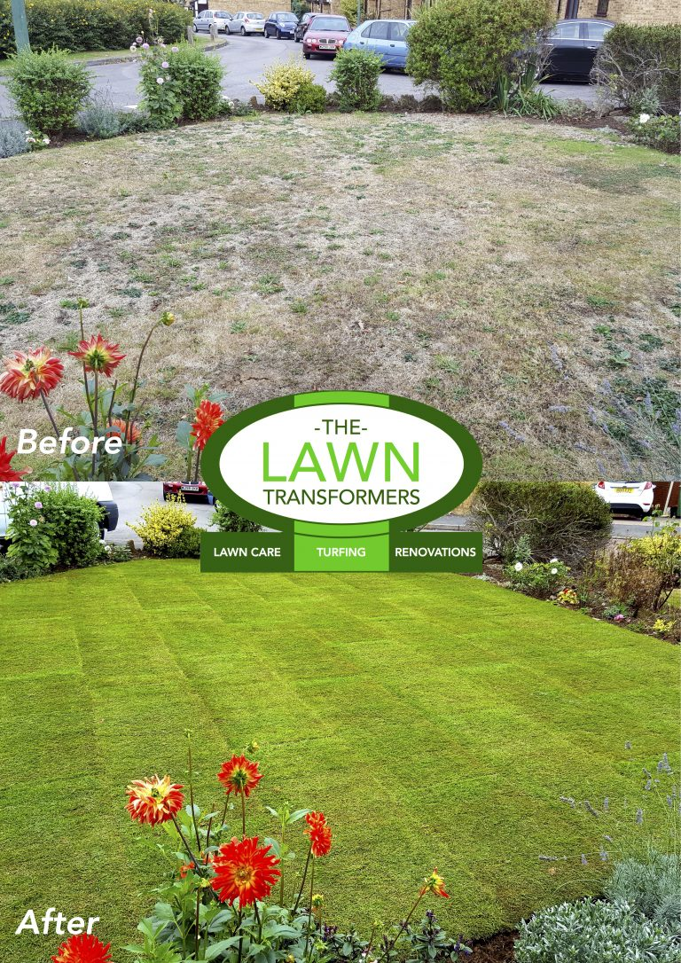 Front-lawn-re-turfed-Grove-Green-Maidstone-Kent-ME14