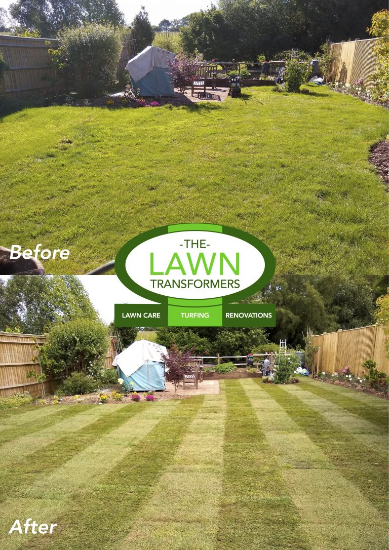 Kent-Turfing-Company-for-replacement-lawns-TN12