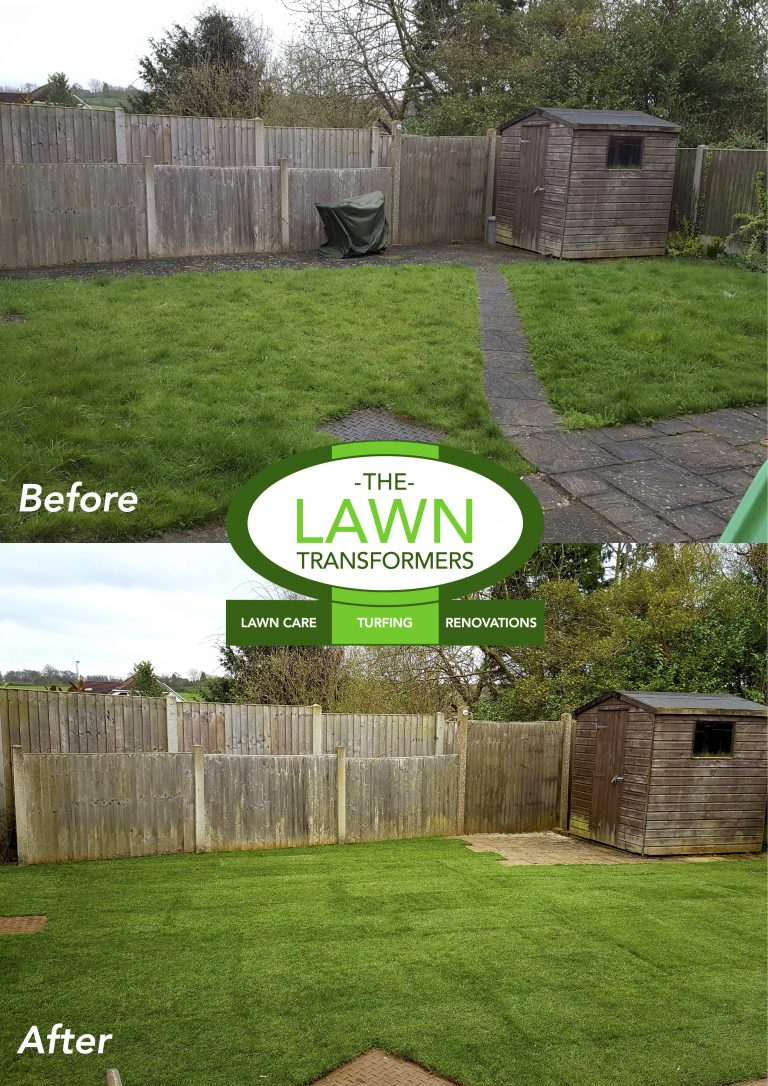 Lawn-replacement-Maidstone-Bearsted-ME15
