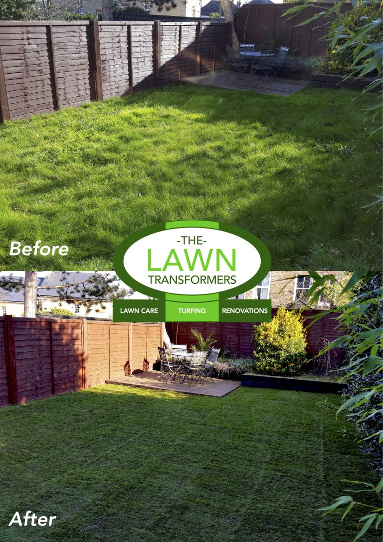 Lawn-replacement-new-lawn-turf-turfing-Bearsted-Kent-ME15