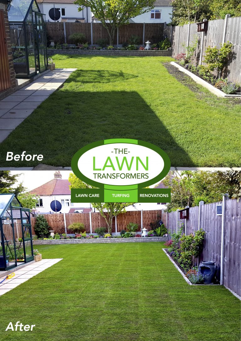 Lawn-replacement-new-lawn-turf-turfing-Welling-Kent-DA16