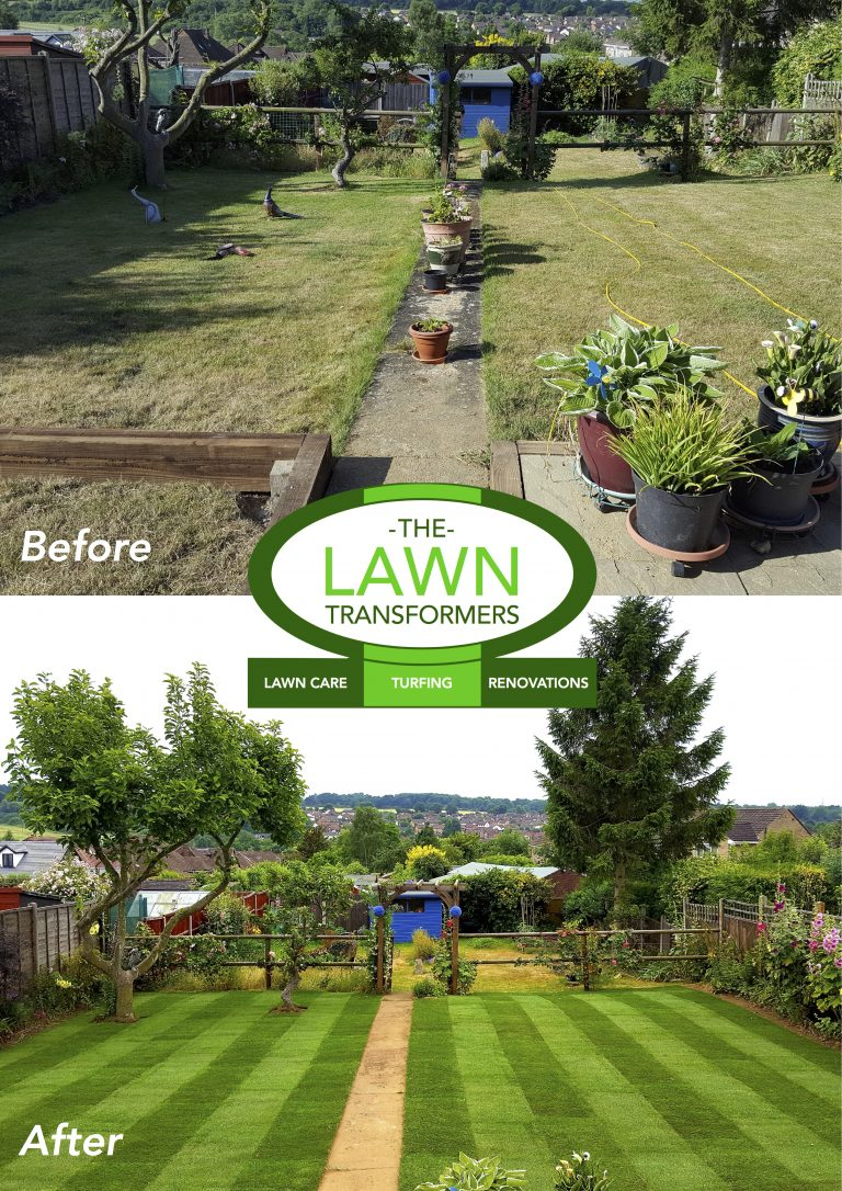 Lawn-replacement-turfing-Bearsted-Maidstone-Me15