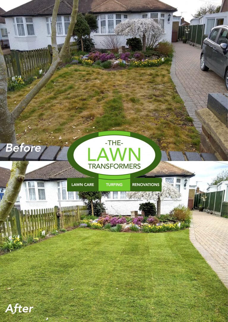 Lawn-turf-replacemnet-turfing-Bearsted-Maidstone-Kent-ME14-ME15
