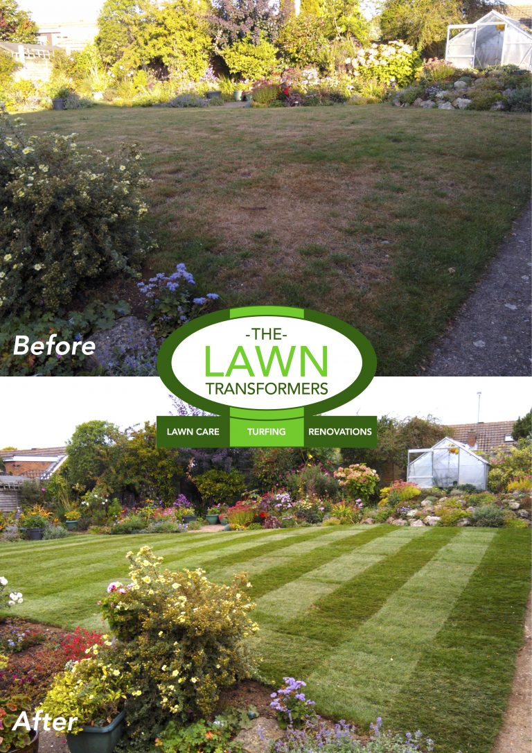 Maidstone-Lawn-Replacement-Company-ME14-ME15-ME16-ME17-ME20