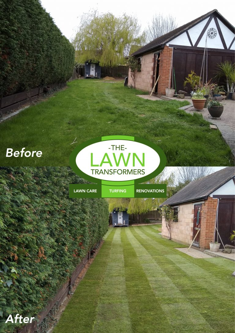 Overgrown-Lawn-Replacement-Maidstone-Kent-ME14-ME15