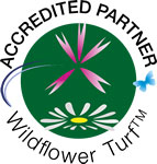 wildflower-turf-installers-kent