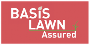 basis-lawn-assured-the-lawn-transformers