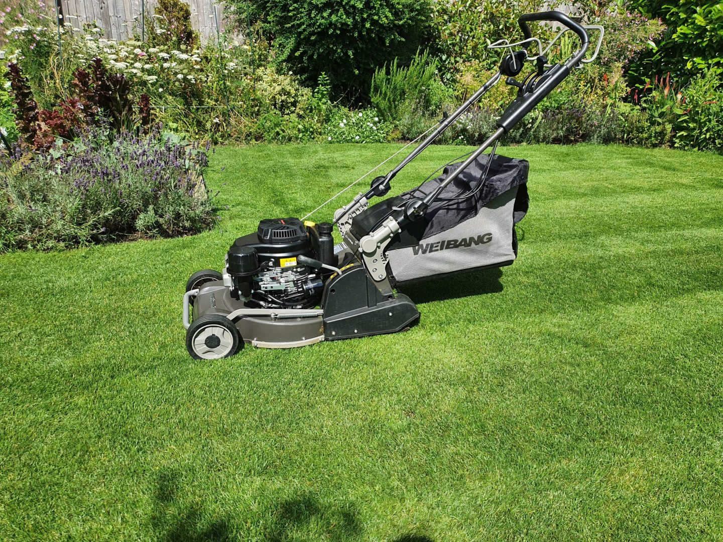 lawn-mowing-services-maidstone