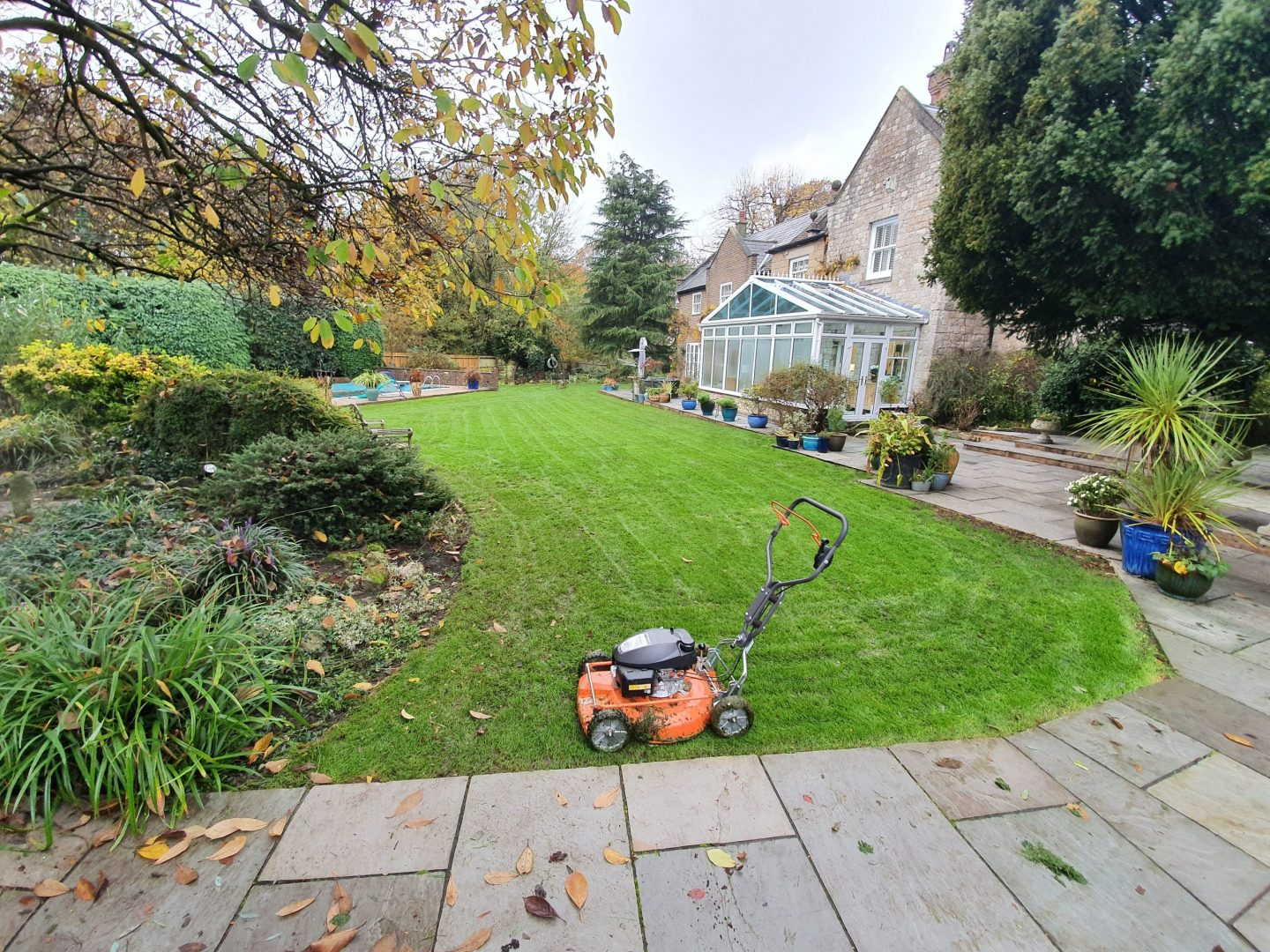 lawn-mowing-maidstone